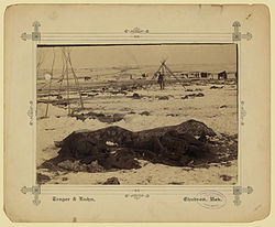 Wounded Knee aftermath.jpg